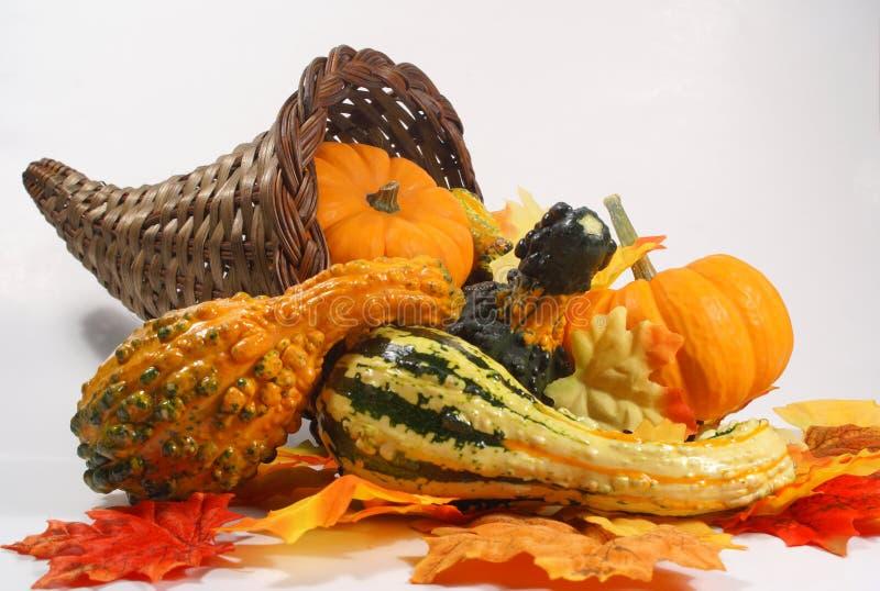 róg obfitości jesienią obrazy stock