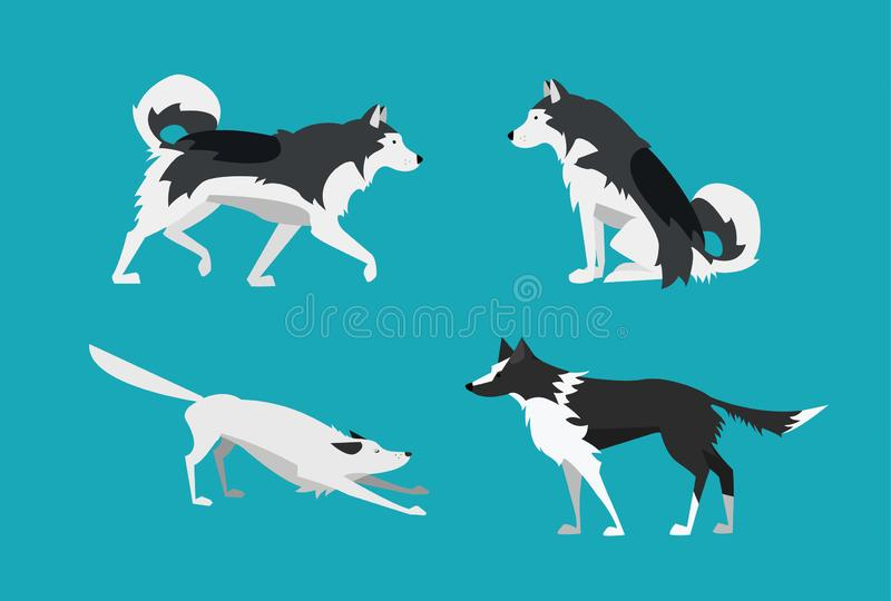 również zwrócić corel ilustracji wektora Set psy w Płaskim projekcie Alaski Malamute i Border Collie ilustracja wektor