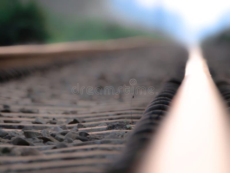 Równoległe linie linia kolejowa fotografia royalty free