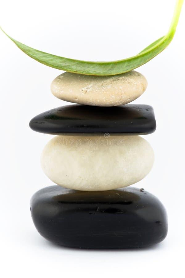 Download Równoważenie Kamienie zdjęcie stock. Obraz złożonej z liść - 13335086