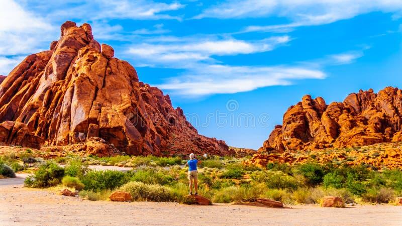 Röd Aztec sandsten vaggar bildande i dalen av branddelstatsparken, Nevada, USA royaltyfri foto
