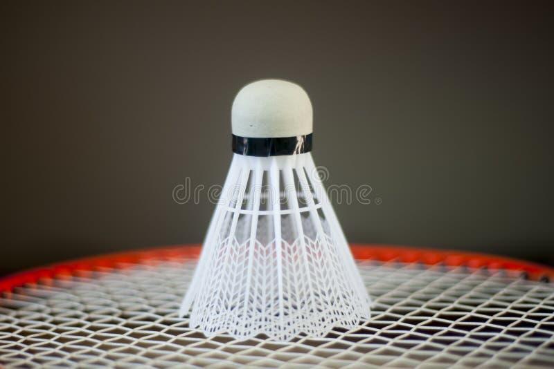 Röd badmintonracket och vitfjäderboll arkivfoto
