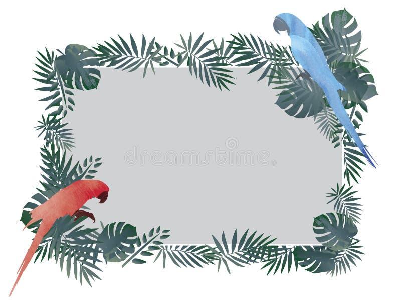 Röd/blå arafågel och tropisk grön bakgrund för bladrammodell vektor illustrationer