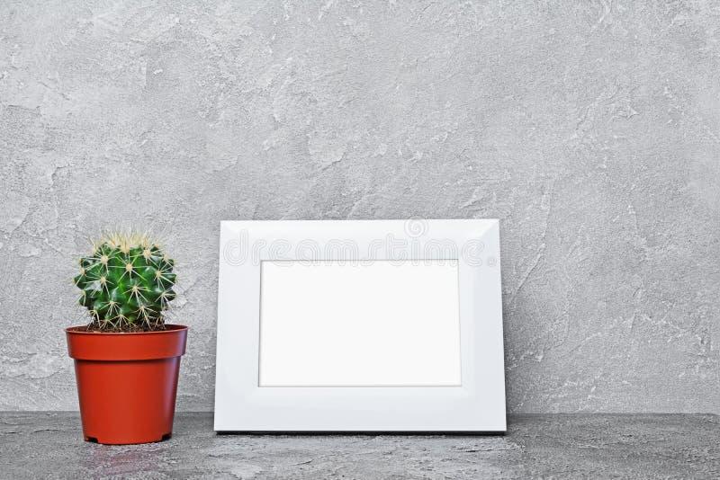 Röd blomkruka med den lilla kaktuns och modellen av den vita ramen med kopieringsutrymme för affisch arkivbilder