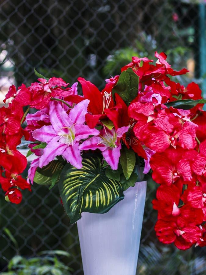 Röd blomma i vasen arkivfoto