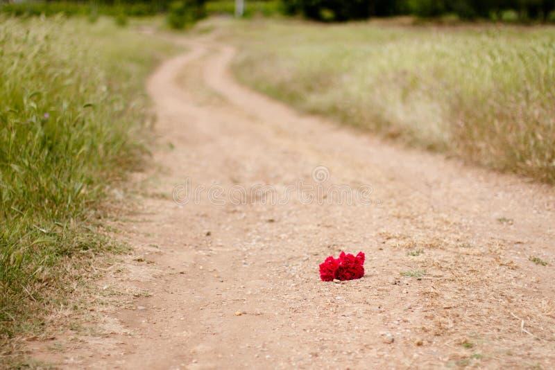 Röd blomma som kastas på banan arkivbild