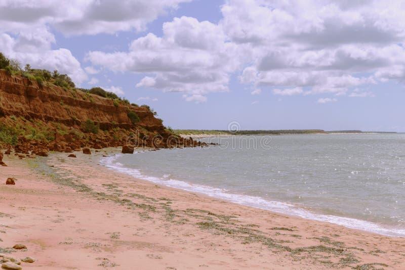 Röd bluff på apan Mia Shark Bay royaltyfri fotografi
