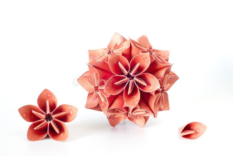 Röd boll för paketkusudamablomma och dess enhet royaltyfri bild
