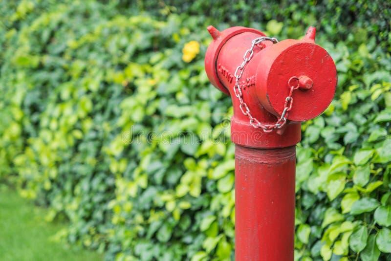 Röd brandpost som omges av grönt gräs arkivfoto