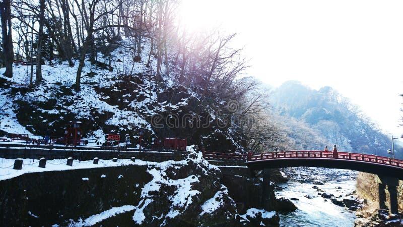 Röd bro för vinter royaltyfri foto