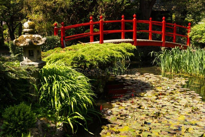 Röd bro. Irländsk nationell dubbs japanska trädgårdar.  Kildare. Irland fotografering för bildbyråer