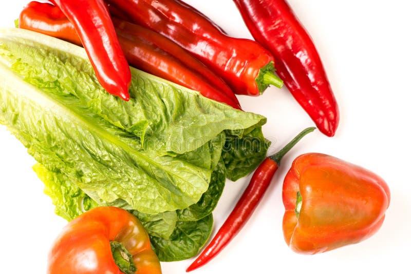 Röd chili, peppar och grönsallat arkivbilder