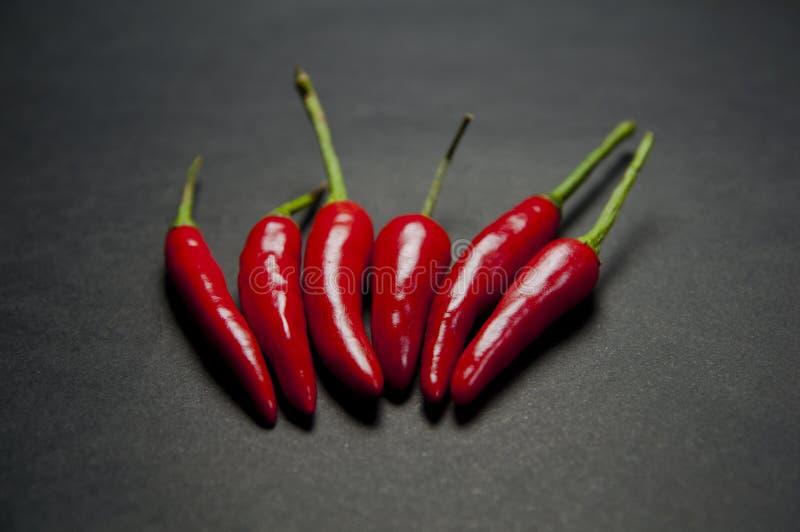 Download Röd chilipeppar arkivfoto. Bild av värme, vitt, full - 27288110