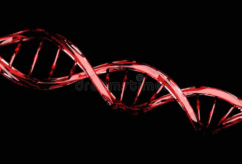 Röd DNAmolekylstruktur på svart stock illustrationer