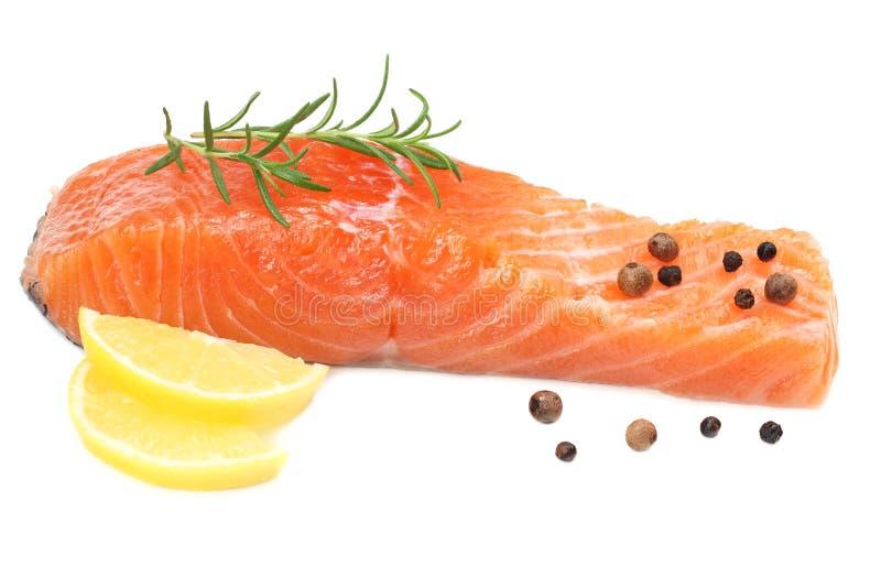 Röd fisk Rå laxfilé med rosmarin- och citronisolaten på vit bakgrund fotografering för bildbyråer