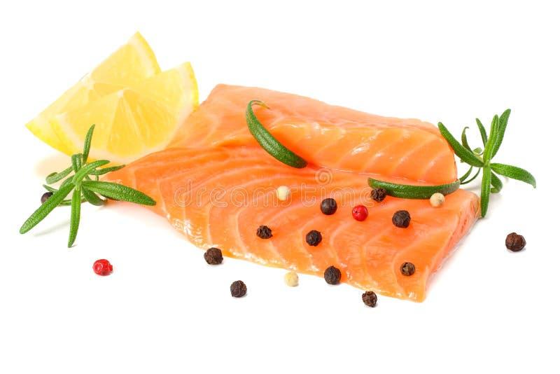 Röd fisk Rå laxfilé med rosmarinisolaten på vit bakgrund arkivbilder