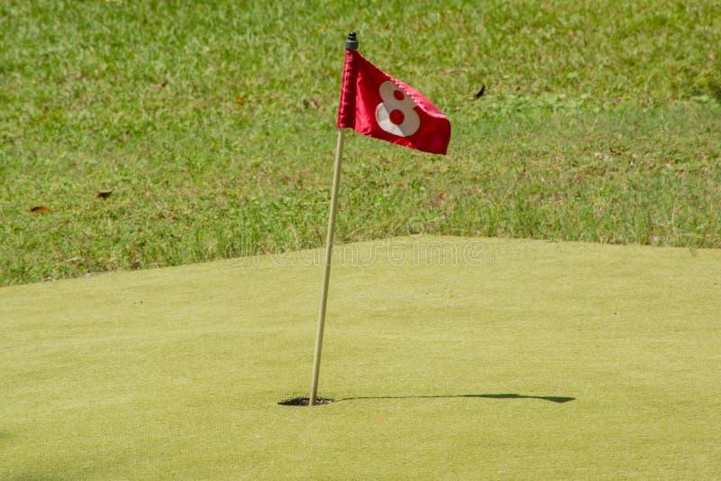 Röd flagga på hålet nummer 8 royaltyfri bild