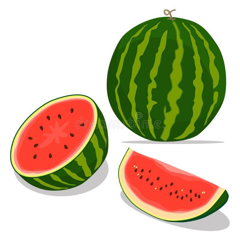 Röd fruktvattenmelon royaltyfri illustrationer