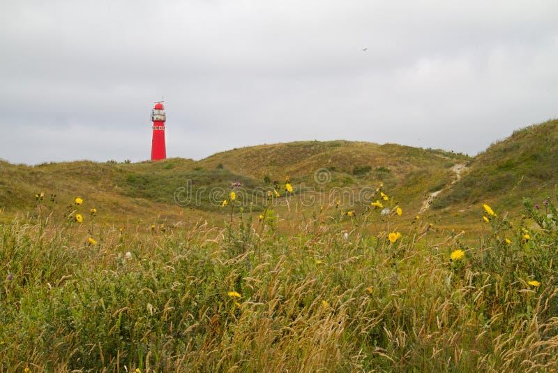 Röd fyr på den holländska ön Schiermonnikoog royaltyfri bild
