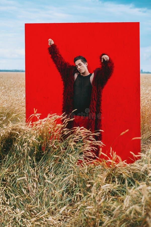 Röd fyrkant på naturen royaltyfria foton