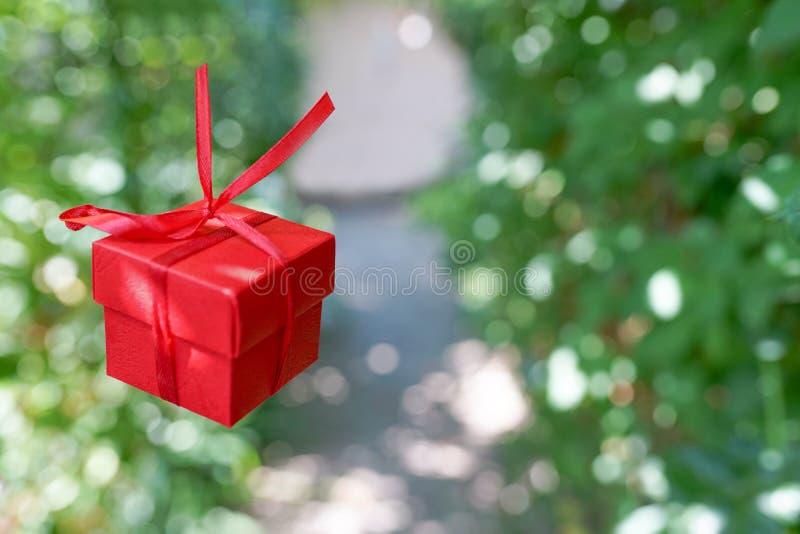 Röd gåvaask på grön naturbakgrund med kopieringsutrymme, överraskningen för födelsedag eller valentin dag arkivbild