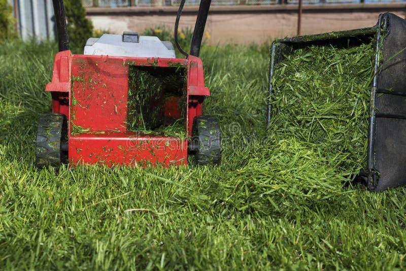 Röd gräsklippningsmaskin och behållare mycket av snittgräs royaltyfri fotografi