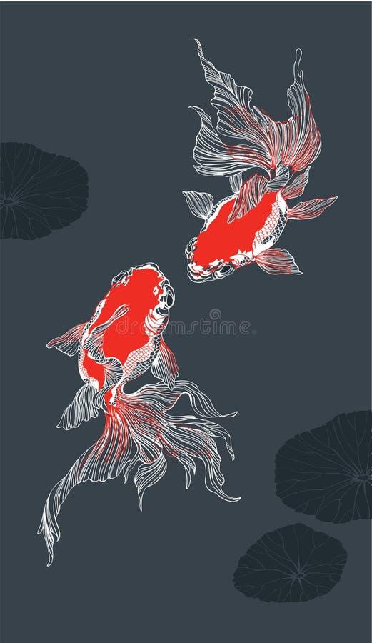 Röd guld- fisk två på svart bakgrundslodlinje royaltyfri illustrationer