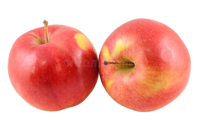 Röd-guling Jonathan äpplen som isoleras arkivbild