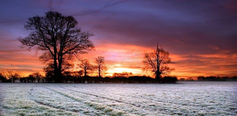Röd himmel över ett fält i Scole Diss Norfolk arkivfoton