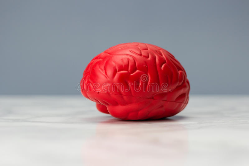 Röd hjärna royaltyfria bilder