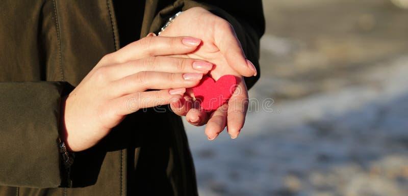 Röd hjärta i kvinnliga händer med en härlig rosa manikyr arkivfoton