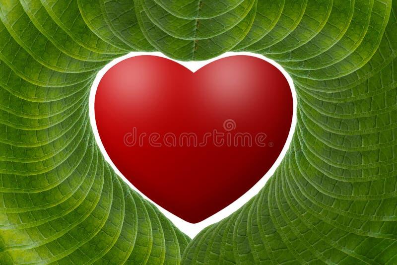 Röd hjärta med gröna sidor. royaltyfri illustrationer