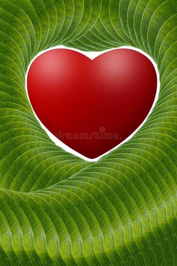 Röd hjärta med gröna sidor av konst vektor illustrationer