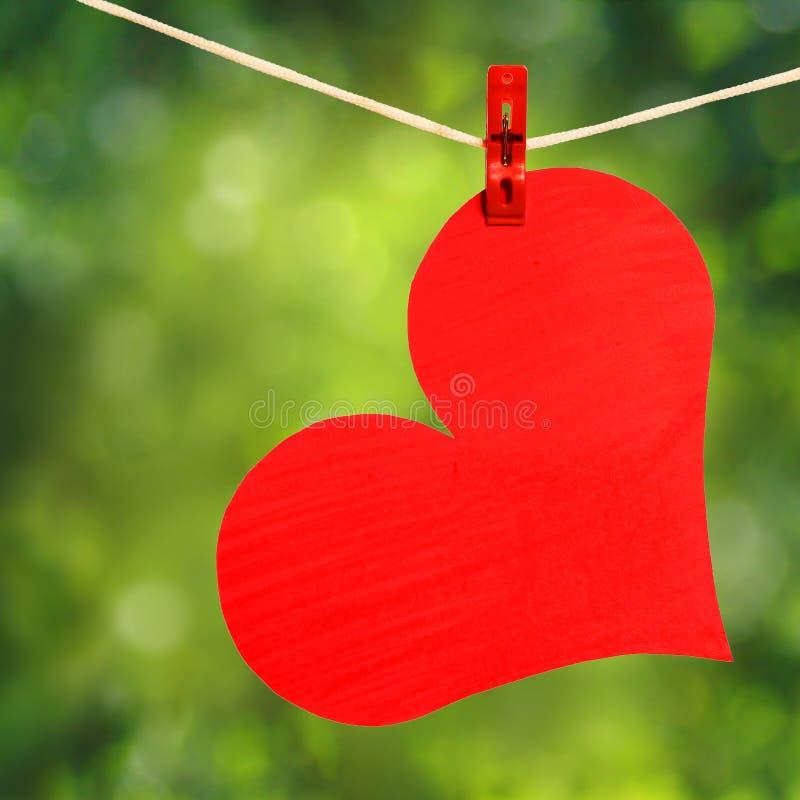 Röd hjärta med klädnypan som hänger på klädstreck över naturen royaltyfri foto