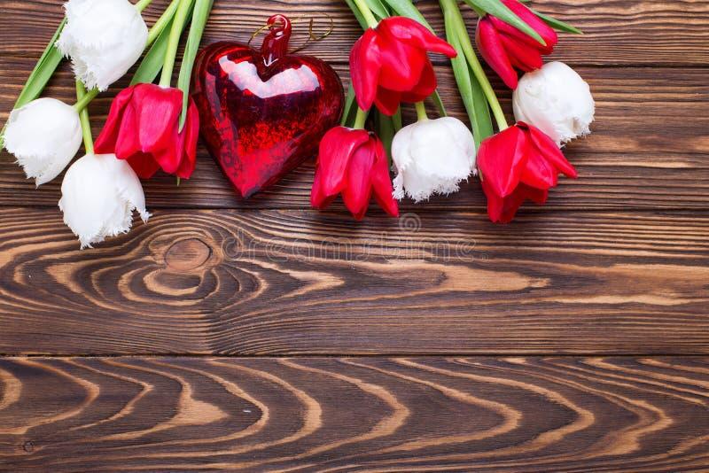 Röd hjärta och gränsen från ljusa röda och vita tulpan blommar royaltyfria bilder
