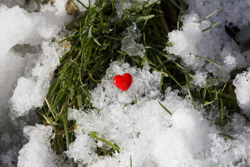 Röd hjärta på en bakgrund av snö och grönt gräs arkivbild