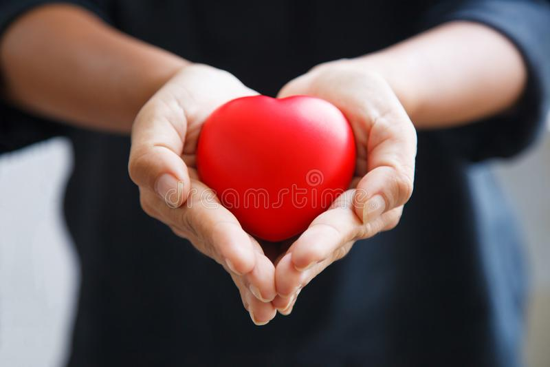 Röd hjärta som rymms av kvinnligns båda händer, föreställer hjälpande händer som att bry sig, förälskelse, sympati, beklagandet,  royaltyfria foton