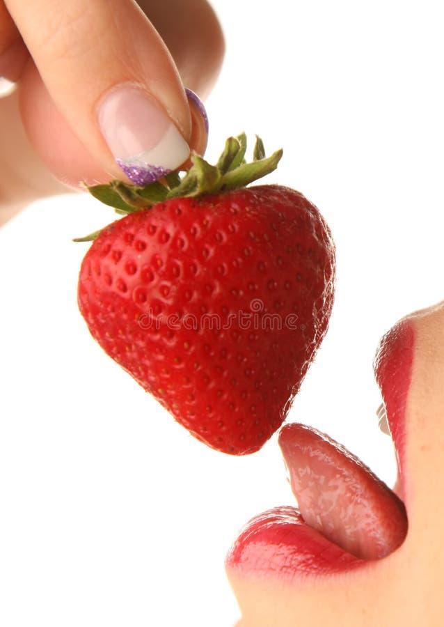 röd jordgubbe arkivfoton