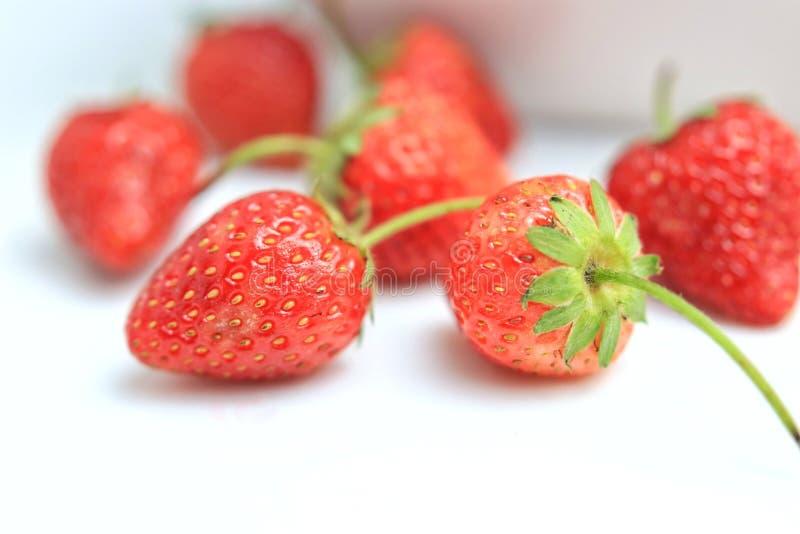 Röd jordgubbe på vit bakgrund fotografering för bildbyråer