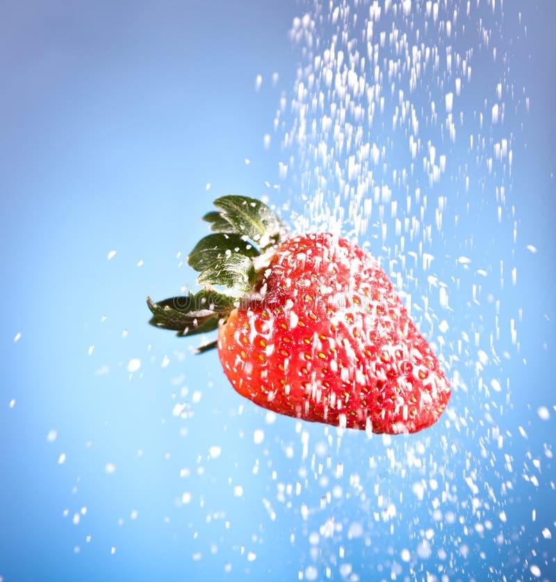 Röd jordgubbe som strilas med vitt socker arkivbilder