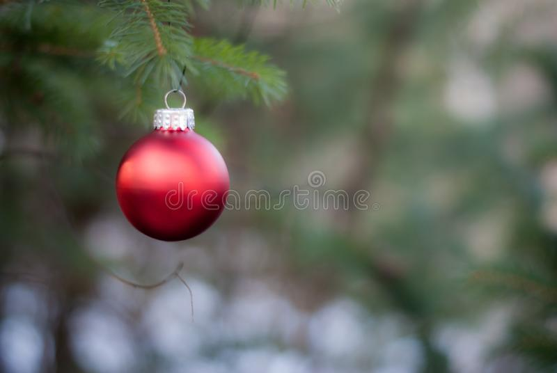 Röd jul smyckar med en suddig bakgrund fotografering för bildbyråer