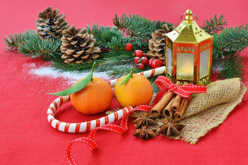 Röd julbakgrund med frukter, kryddor, gran, garneringar royaltyfri foto