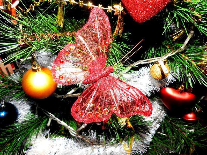 Röd julgranfjäril royaltyfri fotografi