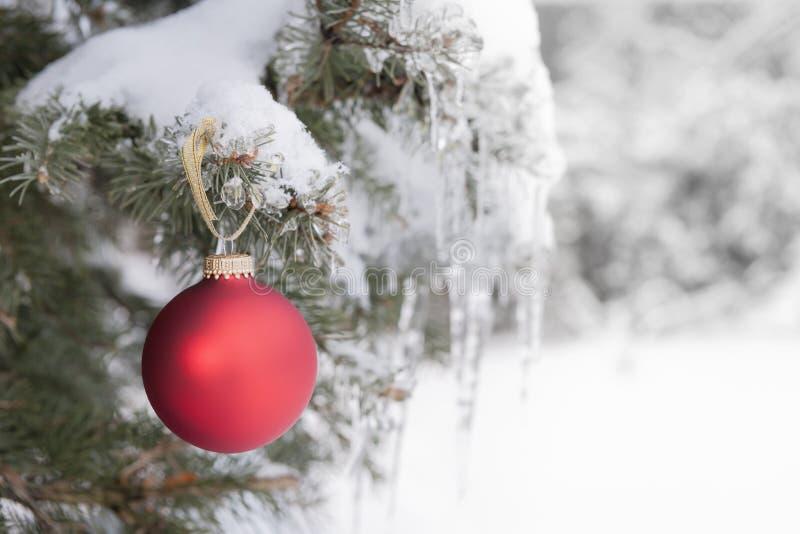 Röd julprydnad på snöig träd arkivbilder
