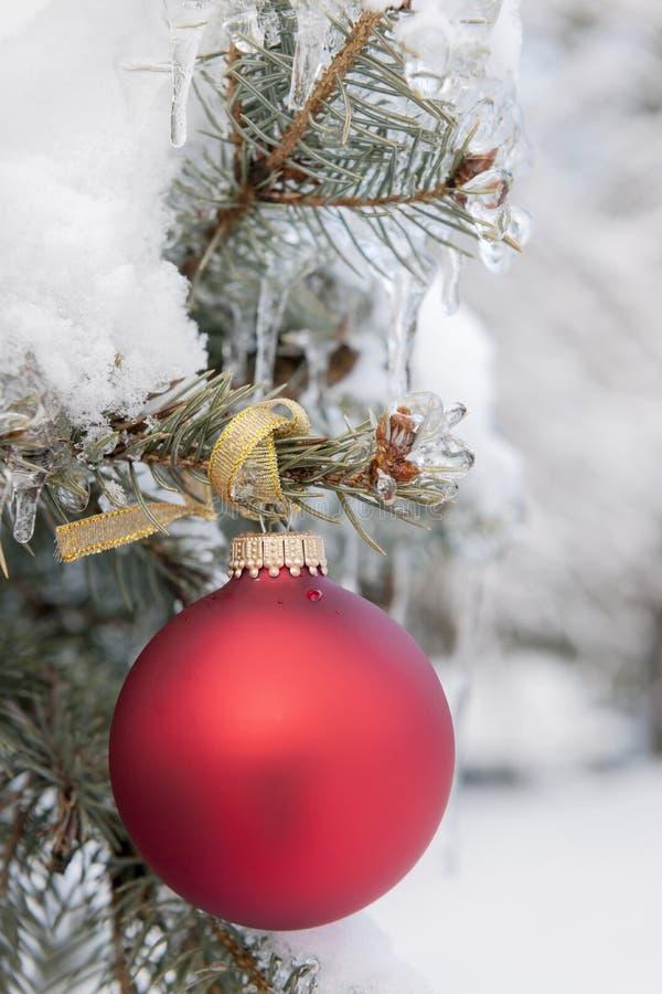 Röd julprydnad på snöig träd fotografering för bildbyråer