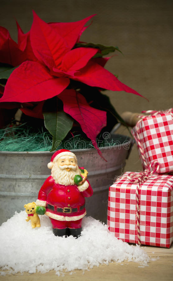 Röd julstjärnablommastilleben arkivfoto