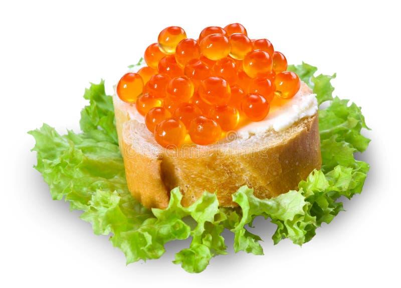 Röd kaviar med bröd på vit royaltyfri fotografi