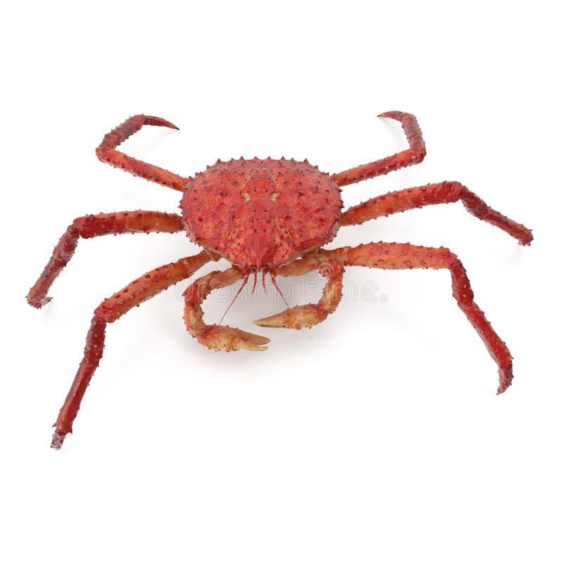 Röd konung Crab Kamchatka Isolated på vit bakgrund illustration 3d arkivfoto