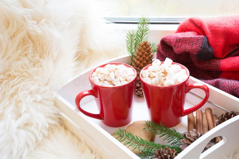 Röd kopp av varm choklad med marshmallowen på fönsterbräda Helgbegrepp Hem- stil julskogen knurled morgon som snöig trails övervi arkivbild