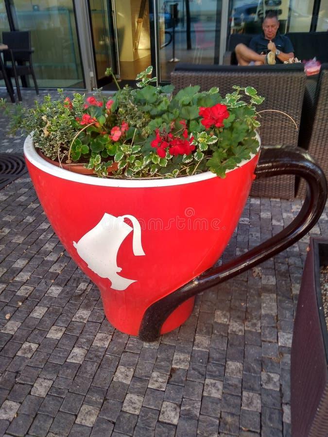 Röd kopp med blommor royaltyfri bild